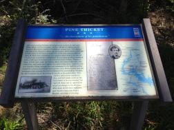 Pine Thicket Civil War Trails Marker 2