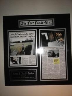 Framed Cleydael Article