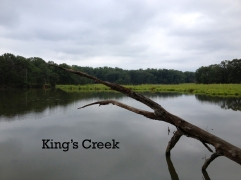 King's Creek 2