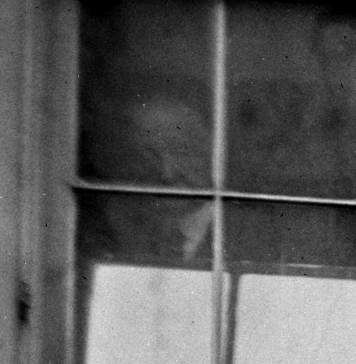 Oldroyd in the window