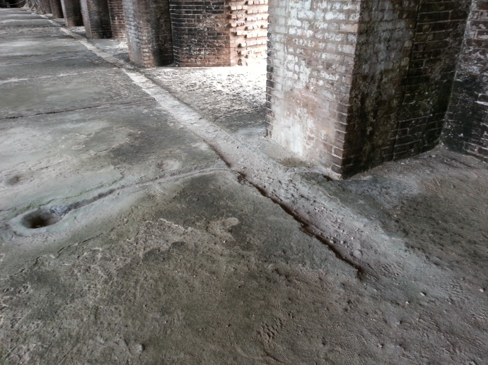 P. Mudd's Trench in Cell - Looking SE
