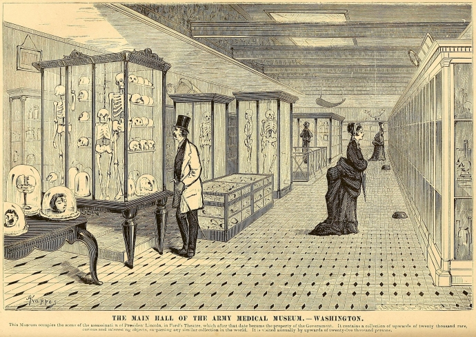 Army Medical Museum in Ford's Theatre engraving 1873