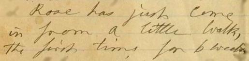Mary Ann Booth writes about Rosalie 1-20-1881 ALPLM