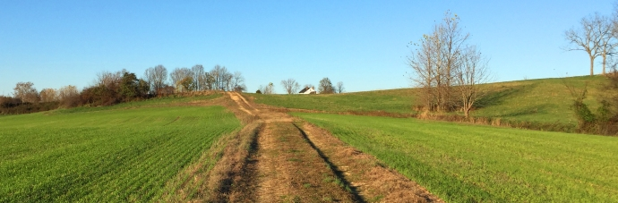 Mudd house landscape