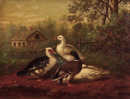 Farm Ducks by Howard Hill